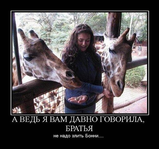 http://cs286.vkontakte.ru/u6719236/99443899/x_4c6be02c.jpg